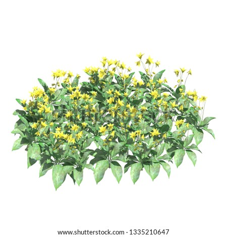 Plants 3d illustration isolated on the white background #1335210647