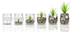 Plants growing on stacks of coins in glass jars isolated on white background. Money, saving, bussiness and investment concept. with clipping paths.
