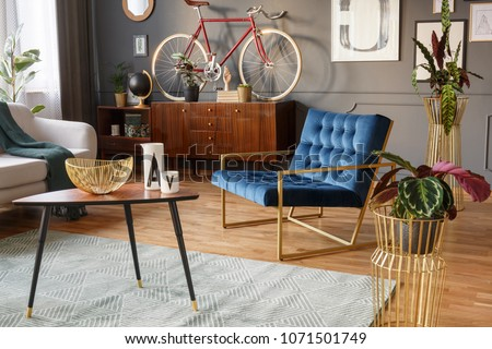 Plants in golden pots, wooden coffee table with decorations and blue armchair in a vintage living room interior