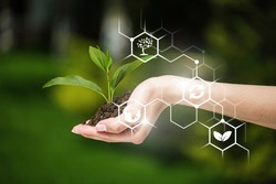 Plants in hand with biochemistry structure illustrations