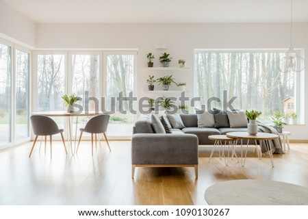 Plants on shelves in natural apartment interior with wooden table near corner sofa #1090130267
