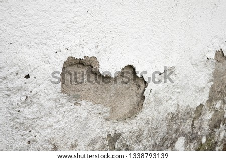 Plaster and paint clog, structural damage, water damage or frost damage