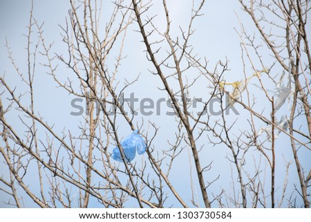 Plastic bags on the branches of trees,Nature ecology catastrophe #1303730584