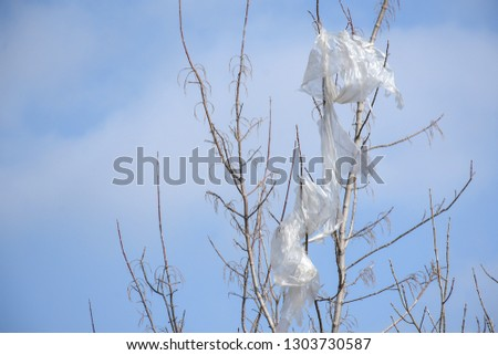 Plastic bags on the branches of trees,Nature ecology catastrophe #1303730587