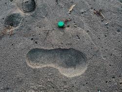 Plastic bottle cork and human footprint on sandy sea ecosystem,microplastics