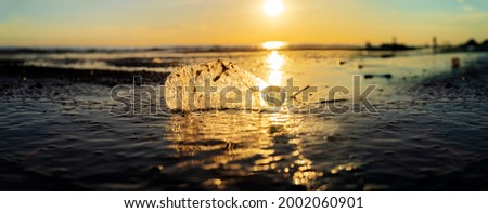 Plastic bottle on sea shore, stone ground show long life garbage concept. A wide image can be made into a bander. Zdjęcia stock ©