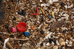 plastic corks and various sticks washed by the sea