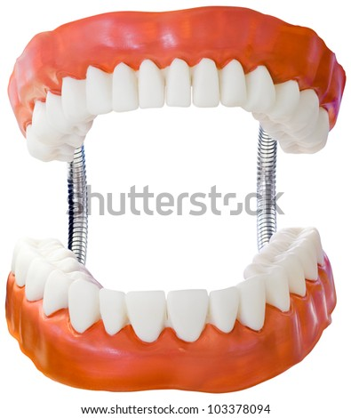 Plastic Denture Model Isolated with Clipping Path