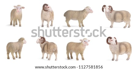 Plastic figurines lamb and ram in various poses isolated on white background