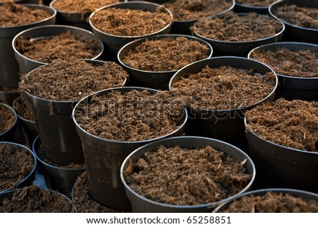 Plastic flower pots with ground soil, close up image