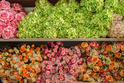 Plastic flowers for sale at the weekly outdoor market.
