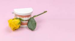 plastic jaw and yellow rose. creative minimalist concept happy valentine's day, dentist's day