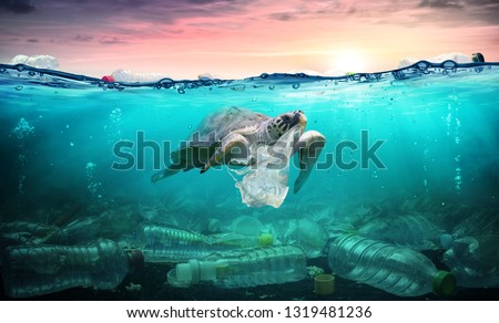 Plastic Pollution In Ocean - Turtle Eat Plastic Bag - Environmental Problem  #1319481236