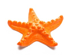 Plastic starfish, orange sea star isolated on white background