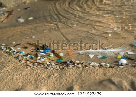 plastic waste; sea; micro plastic