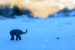 Plasticine elephant and spider adventure on the snow