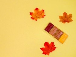 Plasticine of brown shades and  autumn leaves lie on the right in the corner on a yellow background with space for text on the left, close-up top view .