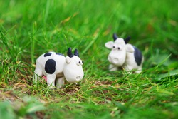 Plasticine world - two little homemade black and white cows grazing on a green meadow, selective focus on one of them