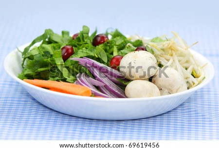Plate of fresh healthy vegetables on table cloth