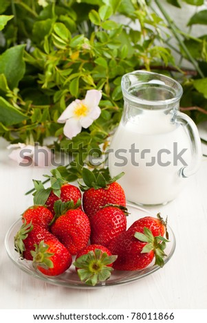 Plate with fresh strawberries and jug of milk on white table with green leafs and wild rose as background
