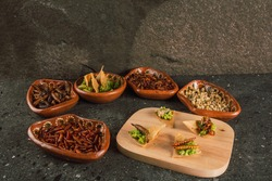 Plate with multiple edible insects, traditional Mexican food, among the dishes are escamoles, grasshoppers, chinicuiles, maguey worms, guacamole with tortilla chips and tortillas, served on a clay pla