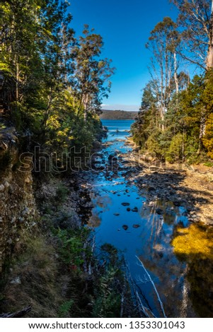 Platypus bay, St Clair Lake, Tasmania