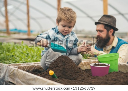 play with ground. small child play with ground. play with ground in greenhouse. father and son play with ground. gardener #1312563719