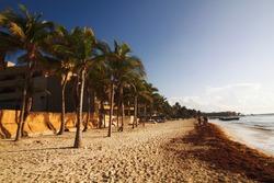 playa del carmen tourist center of the Yucatan Peninsula Mexico