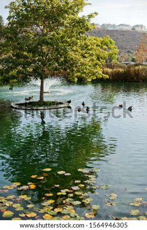 Playa Vista central park, California #1564946305
