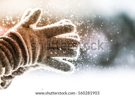Playful Winter #560281903