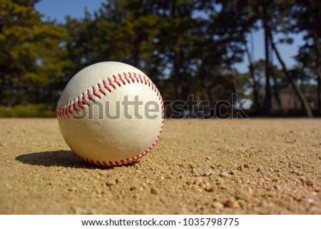Playing baseball at local park