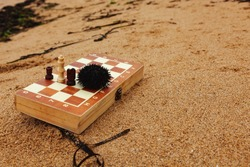 Playing chess on a Board on the beach. Chessboard and sea urchin on the sand on a Sunny day. Vacation on the coast.