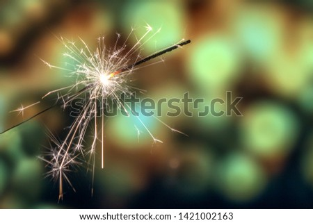 Playing firecrackers sparklers for celebration Christmas, Diwali, Eid Mubarak and all world festival party with blurry background. #1421002163