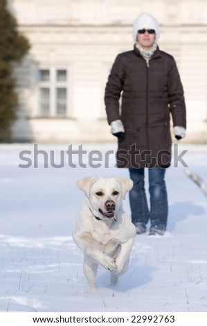 Playing with dog in winter park