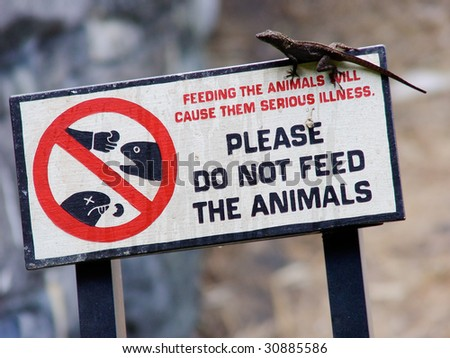 Please Do Not Feed the Animals Sign