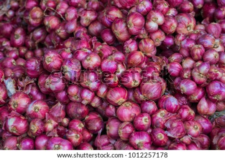 Plenty of shallots or red onion background in market #1012257178