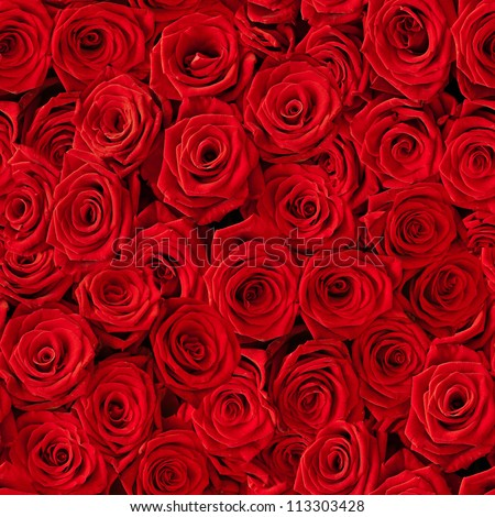 Plenty red natural roses seamless background #113303428