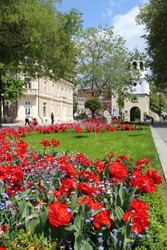 Pleven, Bulgaria - A spring day with view of red tulip garden in the city center