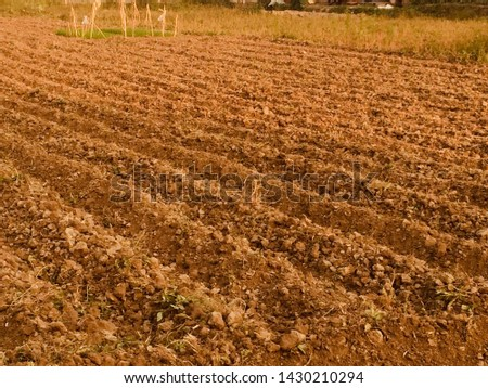 Ploughed land: The land is ready for planting new crops as monsoon will start next month.