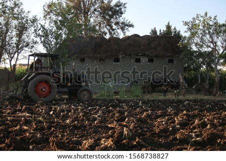 Plow is plowing agricultural land #1568738827