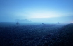 Plowed agricultural field with tractor tracks at sunrise. Moonlight, stars, fog, haze, clear blue sky. Atmospheric autumn landscape. Idyllic rural scene. Pure nature, ecology, seasons, night