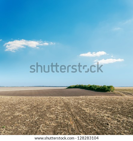 plowed field in autumn under light cloudy sky - stock photo
