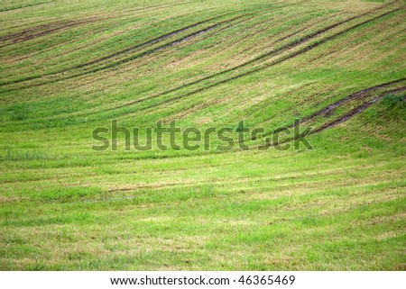 Plowed field where some grass has started to grow