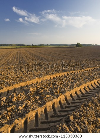 plowed field with tractor traces