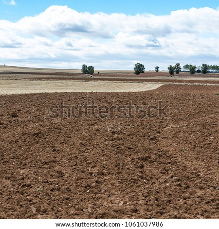 Shutterstock Plowed sloping hills prepared for planting crops in Spain in the autumn. Rural landscape with field after harvest.