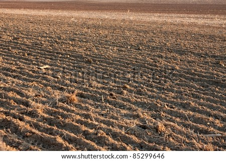 Plowed soil of an agricultural field
