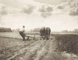 Plowman, by J.G. Beers and Laurens Hansma, Dutch farmer working a horse drawn plow, 1904, English photograph