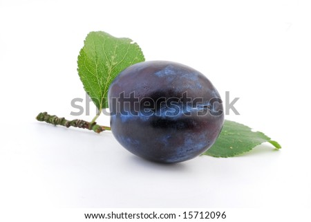 Plum. Plums  - composition from  fresh plums on the white  background. Plums. isolated on white. Plums  with leaves. Healthy plums. Plum with leaves.