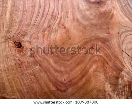 Plum tree natural wood grain close up, with swirls and patterns, very colourful.