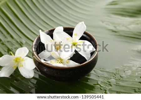 Plumeria flowers in bowl and wet banana leaf